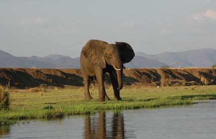 Rwanda Tour Package 7Days
